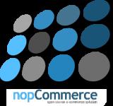 NopCommerce Development Company